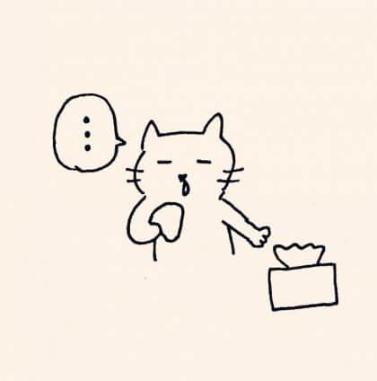 鼻水をかむ猫