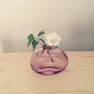 シンプルに花を楽しみ、育てるコツ。