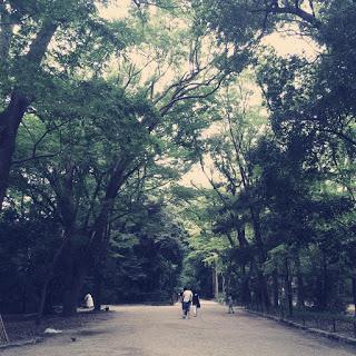 【縁結びと清涼に】夏の京都は「下鴨神社の糺ノ森」が心地いい。