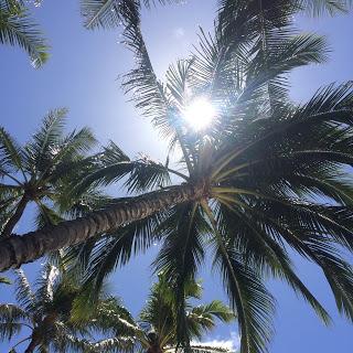 ハワイ ビーチヨガ