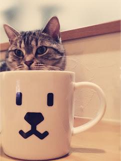 猫 マグカップ