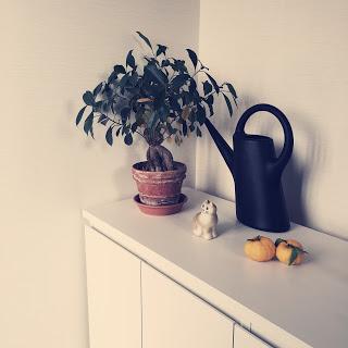 柚子 インテリア 玄関