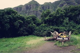【ハワイ】クアロアランチでジップライン体験、絶景の空中散歩!