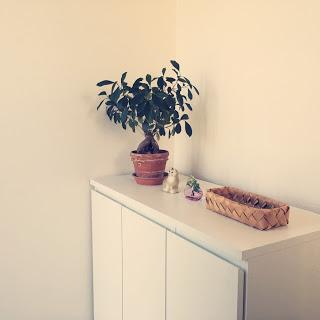 【持たない暮らし】玄関のものを減らし片付けるススメ。下駄箱の中身も公開。