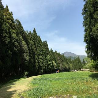 富山 まんだら 遊苑