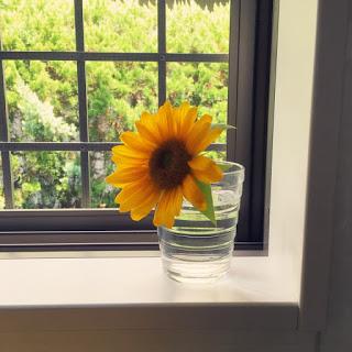 氷をひとつ、夏でも切り花を長く楽しむ。