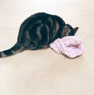 猫 編み物
