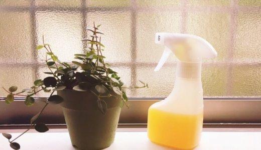 【手作り洗剤】みかんの皮とアルコールでより強力な油汚れクリーナーを作ってみた。